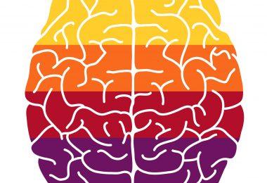 Renk Psikolojisi